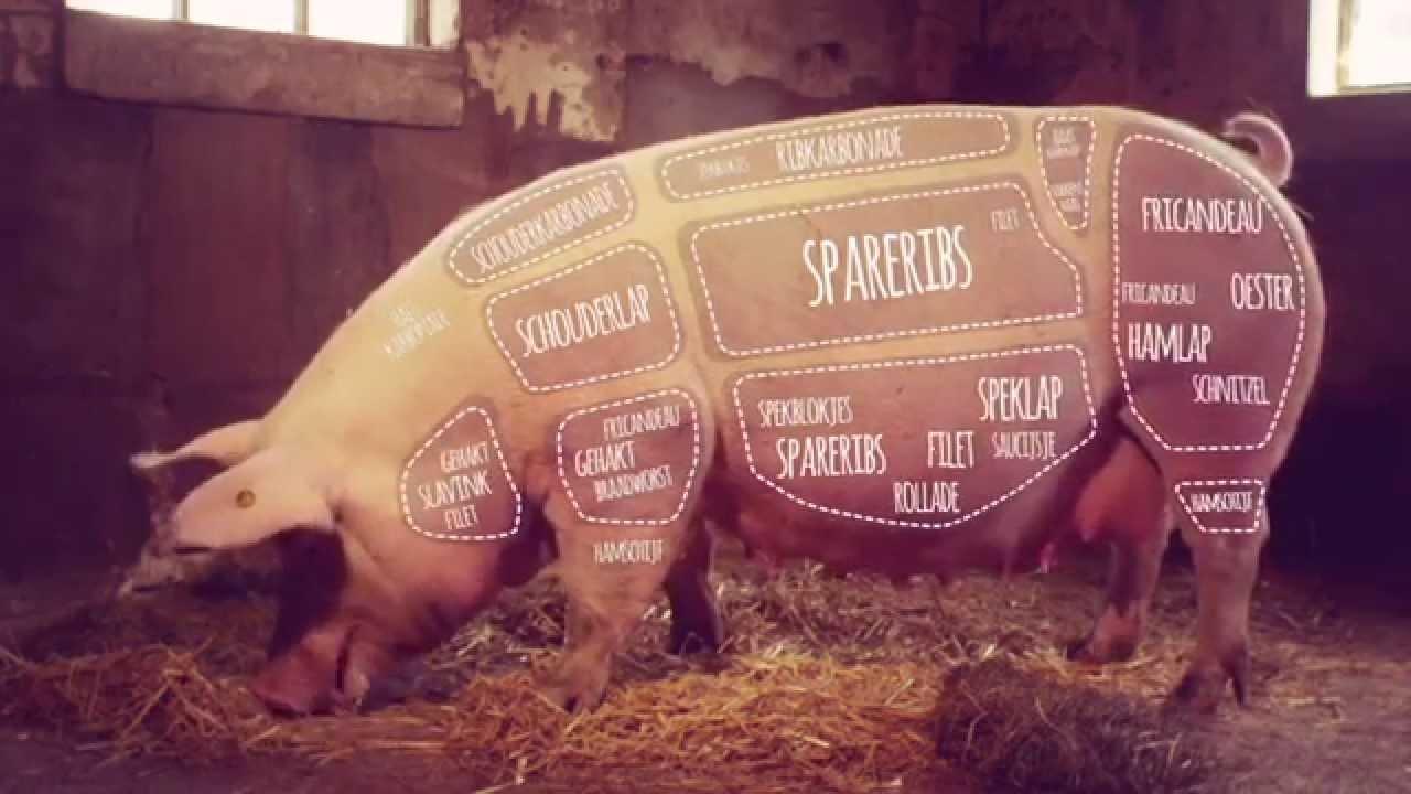 welk vlees