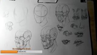 рисуем обрубовку головы