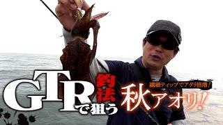 【新釣法】繊細ティップでアタリ倍増!GTR釣法で狙う秋アオリ!