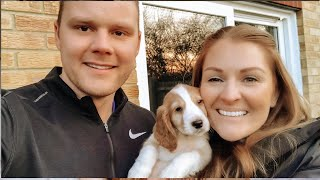 BRINGING HOME OUR NEW PUPPY | OUR 8 WEEK OLD COCKER SPANIEL | Charlotte Jordan