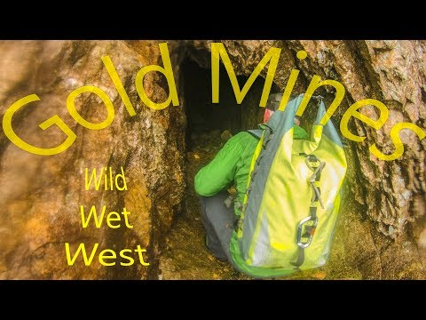 Gold Mines In The Wild Wet West