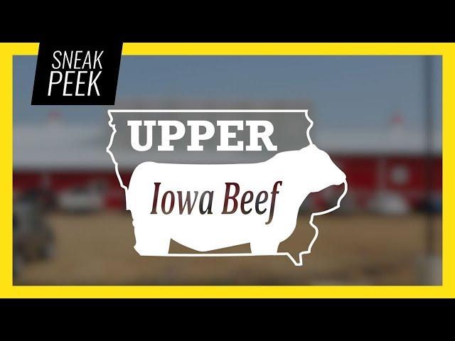 SNEAK PEEK: Upper Iowa Beef