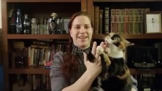 Meet Gizmo: The inspiration behind Sir Kipling the Talking Cat