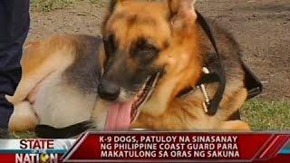 Sona: K9 Dogs, Patuloy Na Sinasanay Ng Philippine Coast Guard Para Makatulong Sa Oras Ng Sakuna