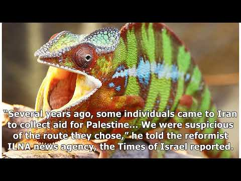 France News - Ex-iran military leader: western nations use lizards tospy