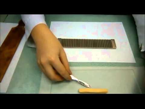 Изготовление суппозиториев методом ручного формирования(выкатывания) Учебный фильм)