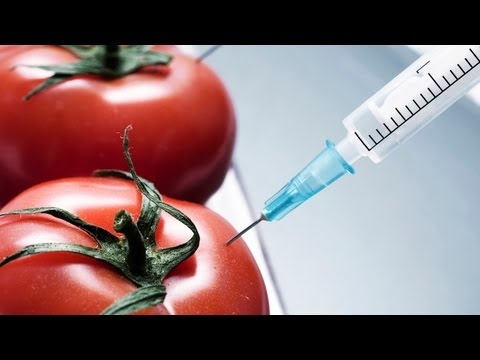 GMO Foods Hide and Seek, Gov't Separates Journalists from Leaks + Conspiracy News