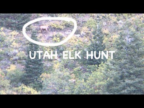UTAH ELK HUNT