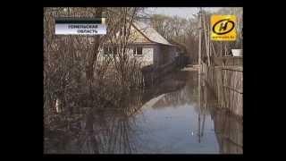 В Гомеле ожидают самое мощное наводнение за последние 30 лет