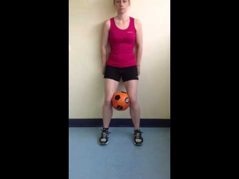 Wall squat ( with ball between knees)