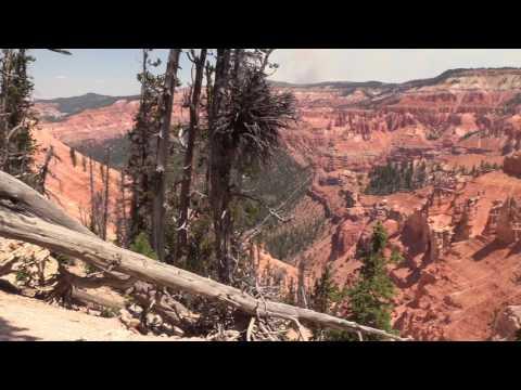 Exploring Cedar Breaks National Monument