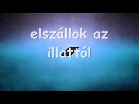 Avicii - Addicted To You (magyar felirat/hungarian lyrics)