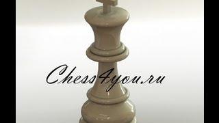 Шахматы. Защита двух коней. Часть 1.
