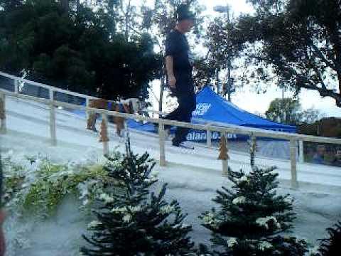 ROSE PARADE 2010 SNOW BOARDING BULL DOG