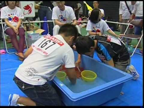 Japan Goldfish Scooping Competition