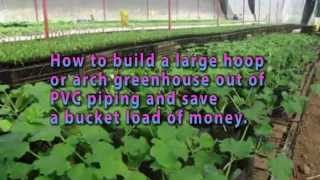 Homemade Greenhouse: Detailed Step By Step Greenhouse Plans| How To Build Homemade Greenhouse