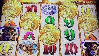 Buffalo Gold 5 Coins Bonus