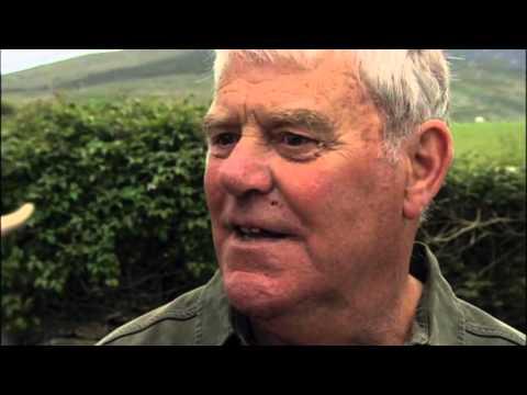Rolf on Welsh Art -  Episode 1