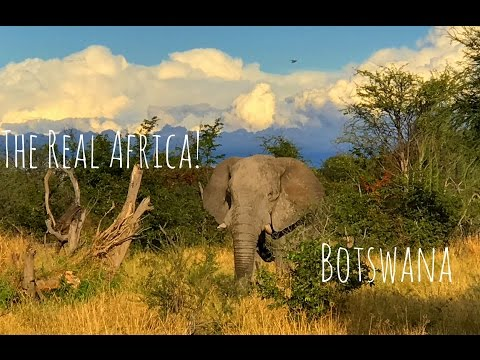 Botswana: The Real Africa (Story #4)