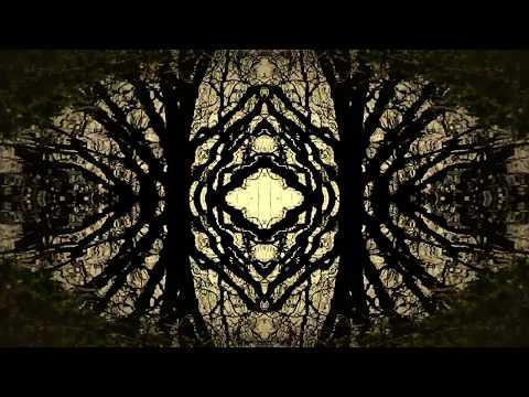 Sharron Kraus - Joy's Reflection is Sorrow Mp3