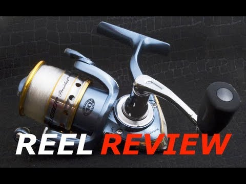 Pflueger President Spinning Reel Review - Best Reel For $50!