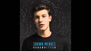 Baixar - This Is What It Takes Shawn Mendes Handwritten Audio Grátis