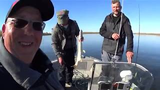 Рыбалка в Астрахани Октябрь 2019