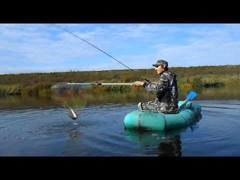 Как ловить щуку осенью | Выбор удилища, катушки и приманок