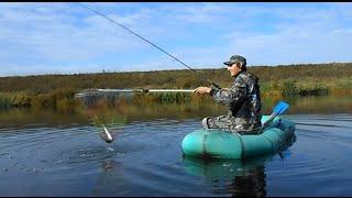 Видео Ловля щуки на спиннинг осенью (ДВЕ ЩУКИ)