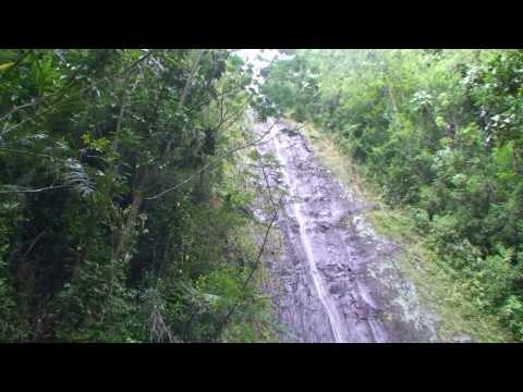Manoa Falls Hiking Tour - Honolulu, HI