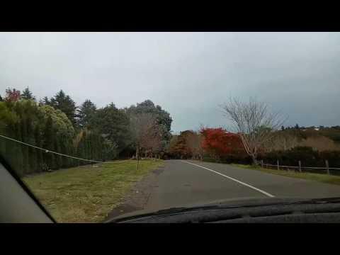 Adelaide-con đường vào Botanic Garden.