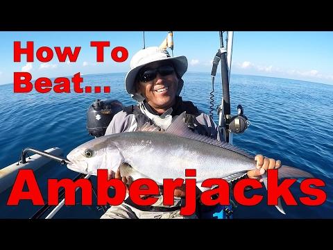 How to: Beating Big Amberjacks On The Wrecks