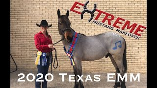 Extreme Mustang Makeover 2020  Fort Worth, Texas