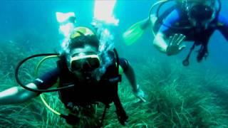 Scuba Diving - Tauchen auf Mallorca