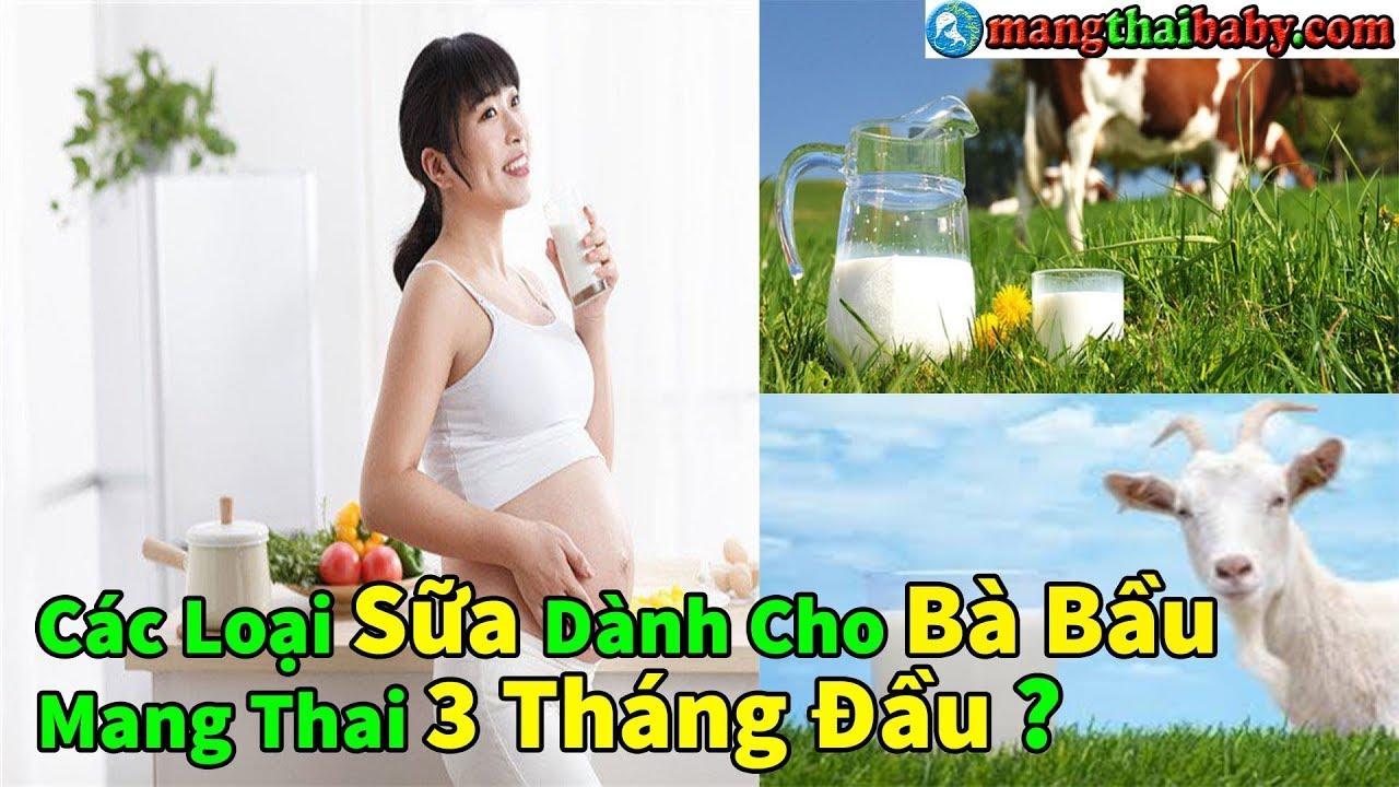 ✅ Các Loại Sữa Dành Riêng Cho Bà Bầu Mang Thai 3 Tháng Đầu Mẹ Nên Biết ? | 3 Tháng Đầu Uống Sữa Gì ?