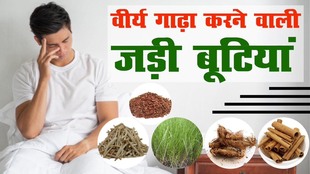 जड़ी बूटियां जो वीर्य गाढ़ा करती हैं / 20 Herbs For Ayurvedic Treatment Of Male Infertility