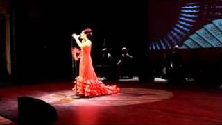 El Flamenco trailer