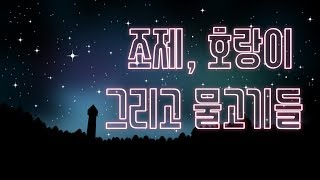 [조제, 호랑이 그리고 물고기들] 김혜리의 영화 사람을 만나다 20130111 음악도시 (78) Josee, The Tiger And The Fish