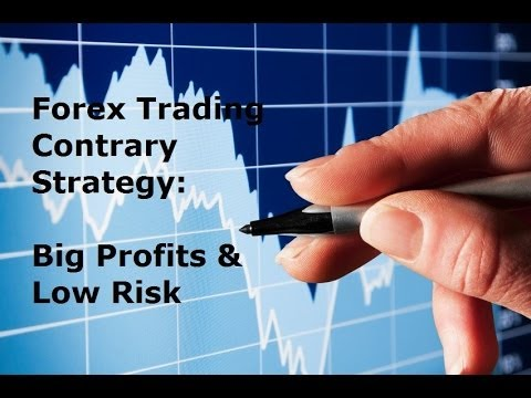 What rate forex brokers apply