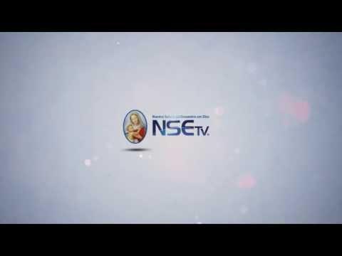 NSE TV