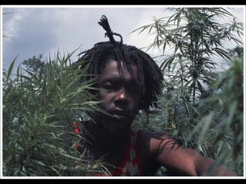 Peter Tosh - Pick Myself Up (1978)