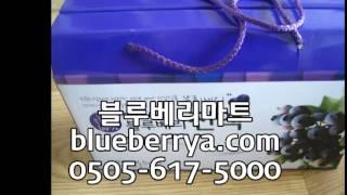 블루베리진액,블루베리진액판매,블루베리진액파는곳