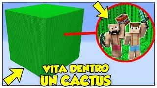 SI PUÒ SOPRAVVIVERE IN UN CUBO DI CACTUS? - Minecraft ITA