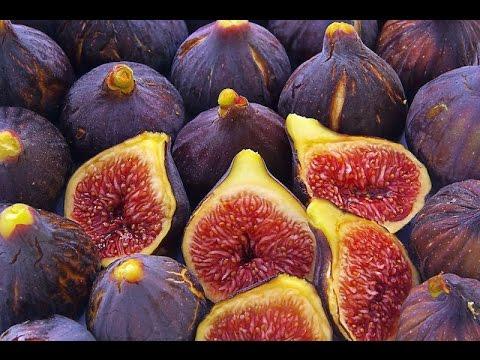 Тутовник (тутовая ягода, шелковица) - описание продукта на