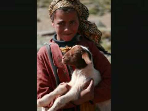 Amarg Fusion 04- Maroc Tarwa Negh (Nos Enfants) 2008