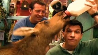zoboomafoo cap 31 caras chistosas