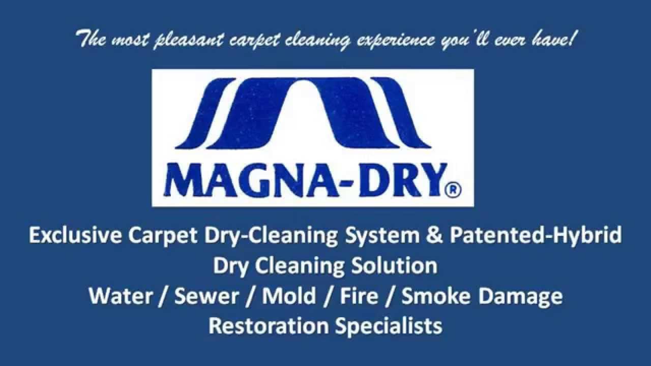 Best Carpet Cleaning In Grand Rapids Mi Youtube