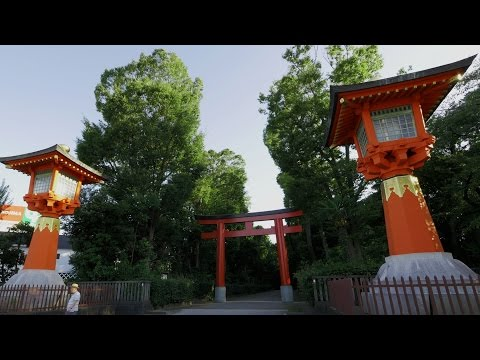 井草八幡宮 Igusa Hachiman Shrine - Flycam C5 Footage