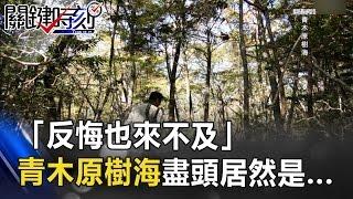 「反悔也來不及」 青木原樹海白色繩索的盡頭居然是... 關鍵時刻 20170502-4 朱學恒 謝哲青 劉燦榮