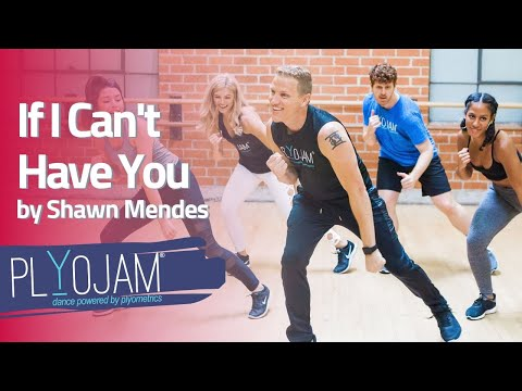 Online Dance Workout Shawn Mendes If I Can't Have You